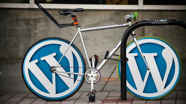 Check if Your WordPress Website Is Down